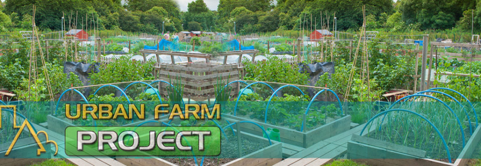 Urban Farm Project