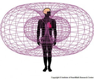 Lemnisacte Rhythm~Vibrational Therapy for Chronic Issues Torus-field-heart